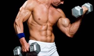 Cientistas descobrem verdadeira fonte de força dos músculos