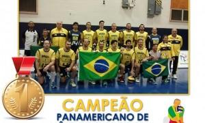 Voleibol brasileiro de surdos conquista medalhas nos Jogos Panamericanos
