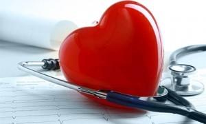 Colesterol: confira mitos e verdades