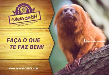 8ª Meia Maratona Internacional de Belo Horizonte