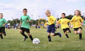 ESPORTE NA ESCOLA – O Esporte ao Longo da Vida