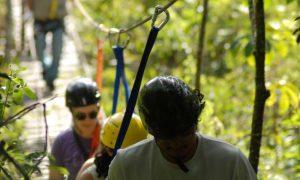 Caminhadas de Verão até 2 de fevereiro na Estação Ecológica da UFMG