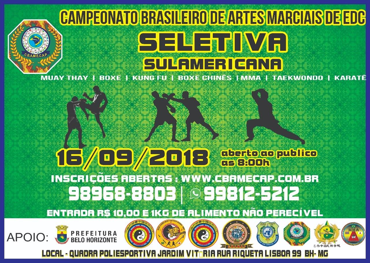 Campeonato Brasileiro de Artes Marciais