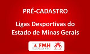 FEDERAÇÃO MINEIRA DE HANDEBOL disponibiliza link para  pré-cadastro de ligas desportivas de Minas